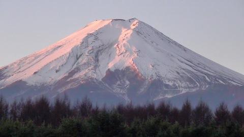 ピンク色に染まる富士山