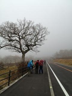 寒々した牧場の脇を歩く