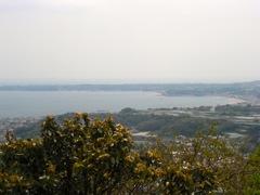 木々の間から海と半島が見えた