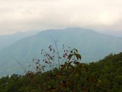 天神山頂上から扇山を望む